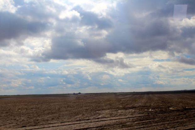 rain-wet-fields