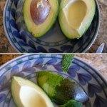 cut Bacon avocado