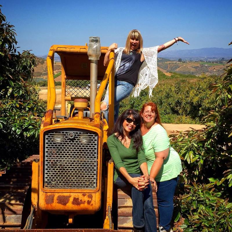 bulldozer and food bloggers