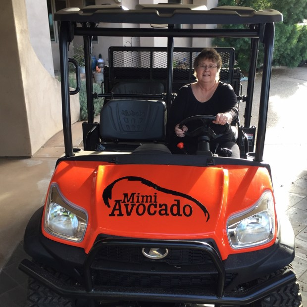 Kubota RTV with Mimi Avocado logo
