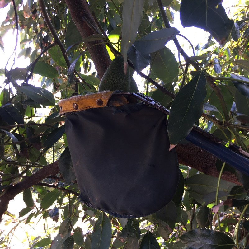 bag on the picking pole