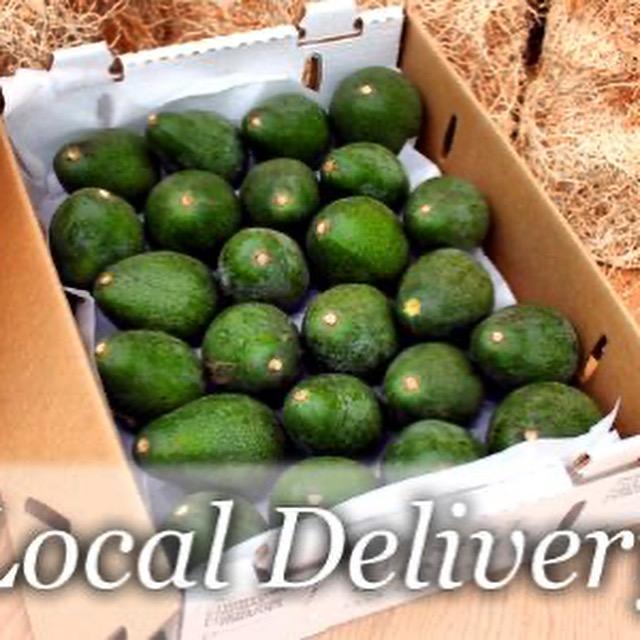 Local Deliver Avocados