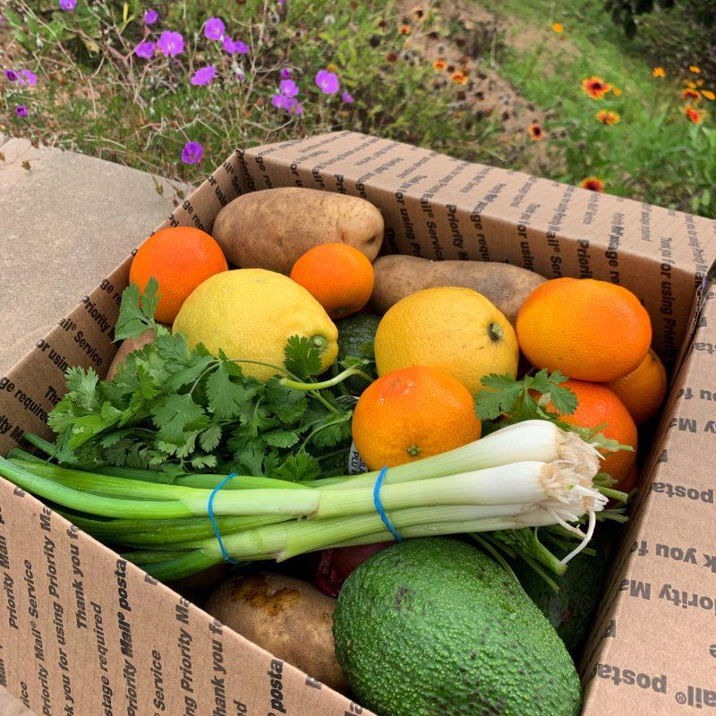 Variety box of produce