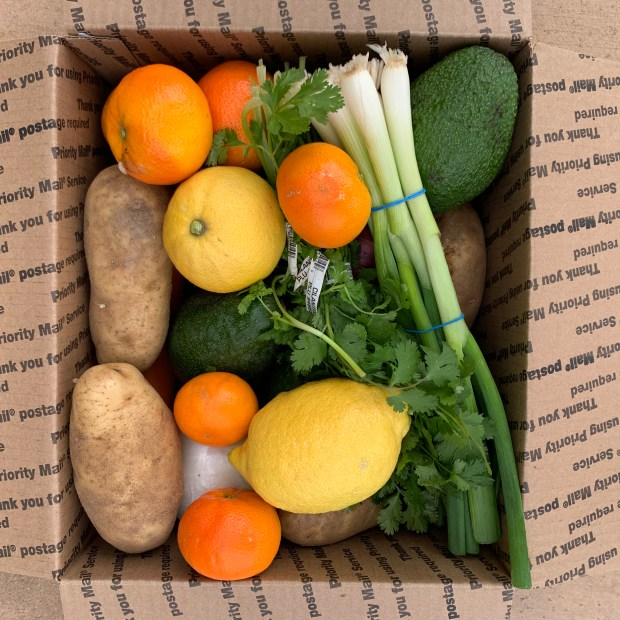 Variety produce box from California Avocados Direct