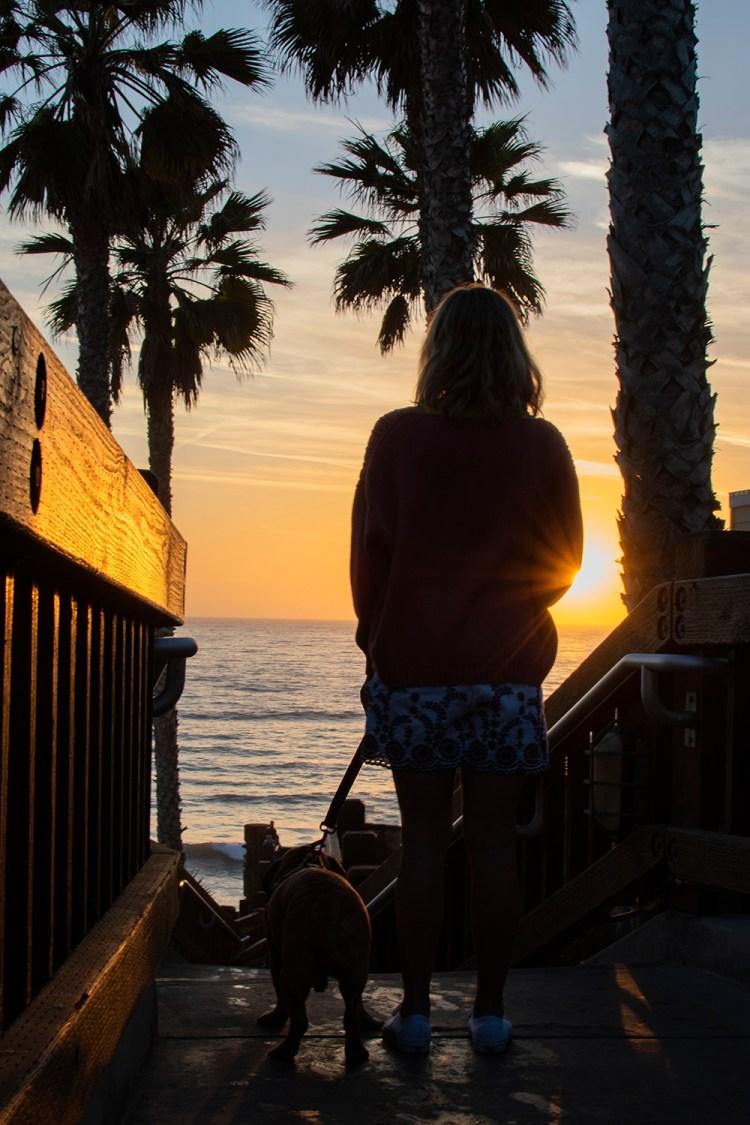 The best hotel in Carlsbad, California. Dog friendly hotel in Carlsbad, California. Beachfront hotel in Carlsbad, California.