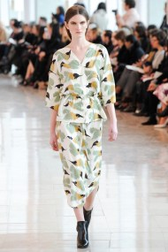 print with feathers at Christope Lemaire