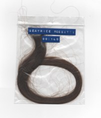 Anouk van Klaveren; hair-of-beatrice-rossetti-000140
