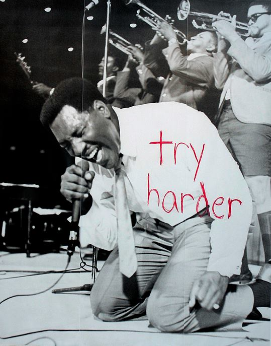 Try Harder by Jason Lazarus