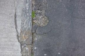 streets_milan_appdikted-05815
