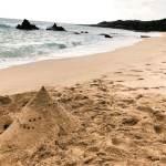 くらもちふさこ「チープスリル」天才の波は違和感をさらって、暖かい砂の山を残してくれた