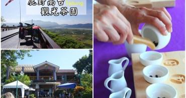 【台東景點】鹿野高台-福鹿山休閒農莊:飛行傘、熱氣球,也別忘記品品台東福鹿茶
