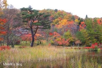 【福島】觀音沼森林公園:日本東北賞楓景點,旅行就該隨遇而安,雨天楓紅也很美。