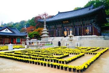 【首爾江南景點】奉恩寺:逛三成站Coex Mall順遊美景,免門票必看宏偉大雄殿、韓國最高的彌勒大佛。