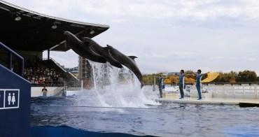 【京都】京都水族館(附交通):JR京都站旁親子景點,歡樂海豚秀,當雨天備案也不賴