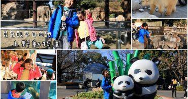 【東京自由行】上野動物園:貓熊、北極熊元氣滿滿超活潑,開心玩整天,大小孩免錢!