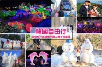 【首爾出發】冬季晨靜樹木園、南怡島冰雪季&採草莓,熱門韓劇韓綜景點親子一日遊