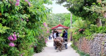 【石垣島出發】竹富島&西表島&由布島一日遊這樣玩!水牛車、紅樹林、超美星砂浜