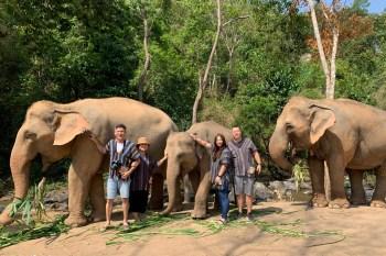 泰國清邁「大象體驗營」陪大象洗澡玩泥巴,近距離接觸超療癒,清邁最夯熱門玩法!