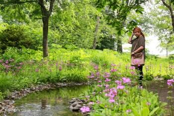 【北海道帶廣景點】六花之森(附Mapcode):六花亭庭園藝術美術館&必買紀念品推薦