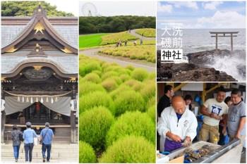 【茨城景點一日遊】東京出發!日立海濱公園掃帚草、大洗磯前神社、珂湊漁市場這樣玩