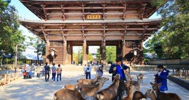 【奈良自由行】10大奈良景點旅遊路線&交通提案攻略:奈良一日遊二日遊這樣玩!
