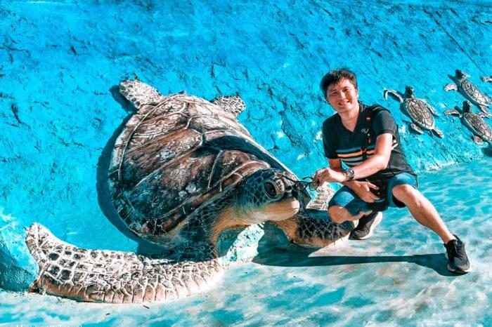 澎湖 竹灣大義宮珊瑚洞、大海龜立體造景&網美景觀台,三個澎湖IG景點一次打卡。