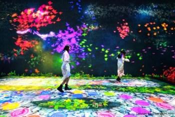 【台北 teamLab】700坪未來遊樂園優惠早鳥票&teamLab必玩九大展區搶先看