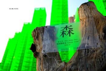 【台南景點】北區.321巷藝術聚落:走入舊時代的回憶裡,原來能穿越時光,真的辦到了~