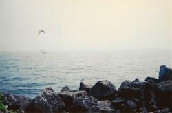bythewaterblog