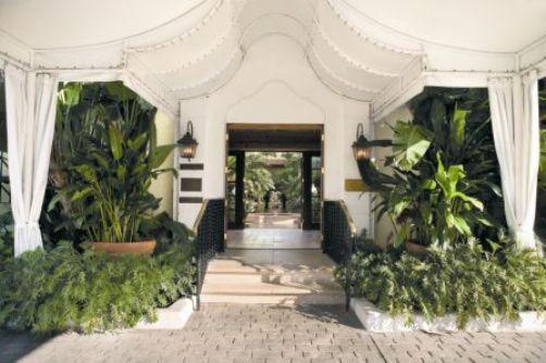 BC Canopy Entrance (TB)-2
