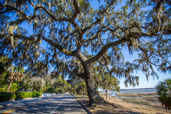 Downtown Beaufort_Lyndi Leary