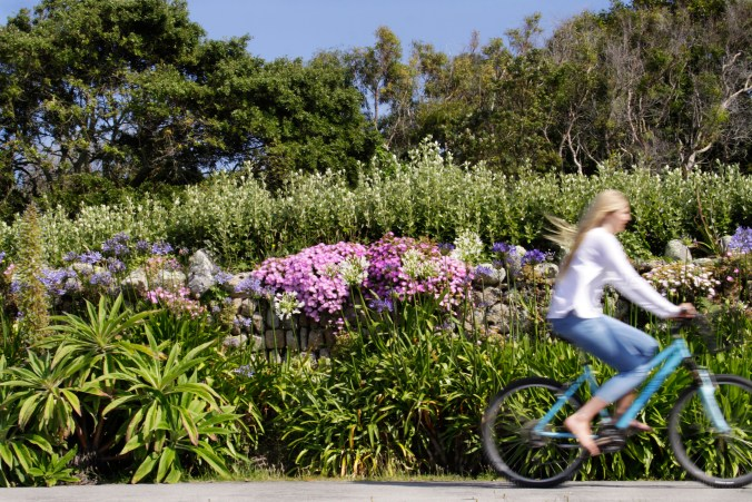 scilly-tresco-girl-cycling