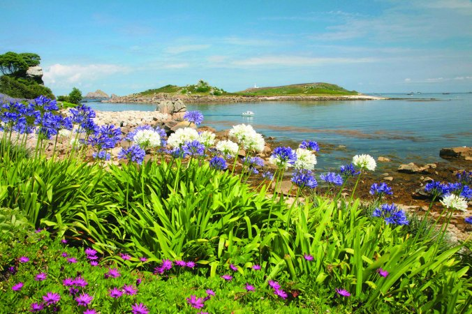 scilly_tresco_towards-norwethel