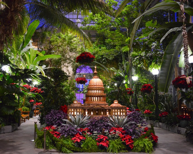 USBG Holiday Show - Capitol building and poinsettias