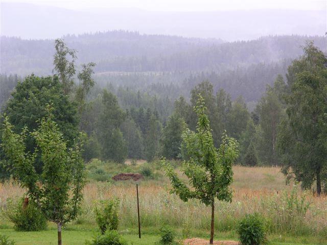 regnig-sommardag_mellan