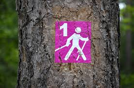 Ruta Nordic Walking5 min - Nordic Walking por La Coruña