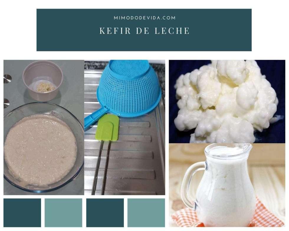 como hacer kefir de leche 1024x819 - Cómo hago Kéfir de leche. Cuidados