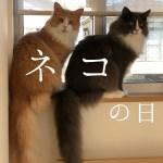 きょうのネコズ ネコの日スペシャル