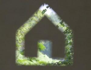 Silhouet van een huis waarbinnen jouw natuur te zien is middels Analytische Therpaie.