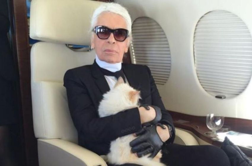 Diseñador famoso deja una herencia de 150 millones de euros a su adorada gata