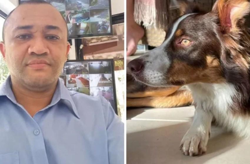 Trabajador encuentra a un perro perdido y rechaza recompensa de casi mil dólares