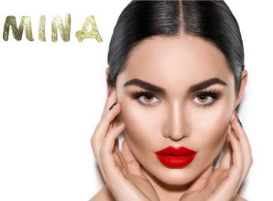 Mina Brow Henna The Ultimate Brow Henna Colour System
