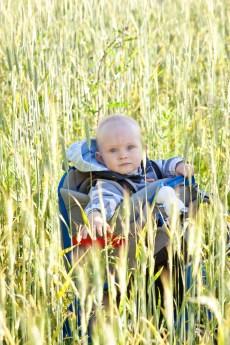 Walle älskar att sitta i ryggsäcken och dra i kvistar som dyker upp