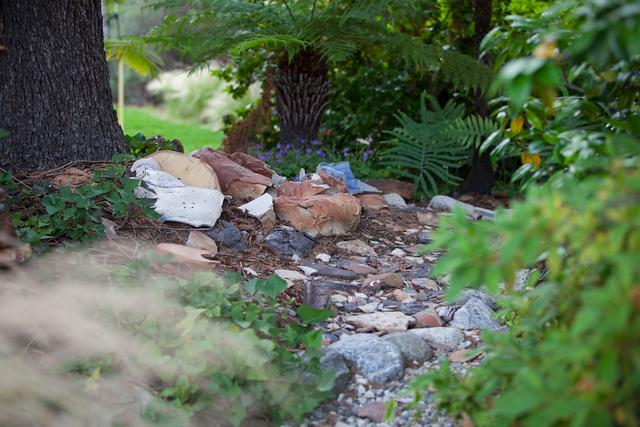 Garden Art - chard pile