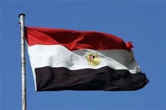 ORGANISASI HAM BAHAS PEMBENTUKAN KOMITE PENCARI FAKTA ATAS PELANGGARAN DI MESIR