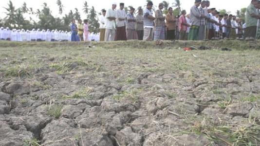 Shalat Istisqa Minta Hujan Yang Penuh Manfaat Mina News