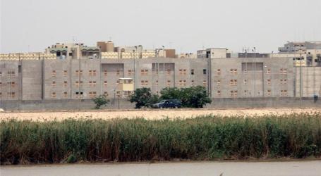 Tiga Warga AS Diculik di Iraq