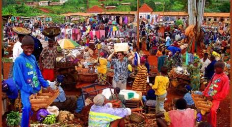 Bom Bunuh Diri Serang Pasar Kamerun, 29 Tewas