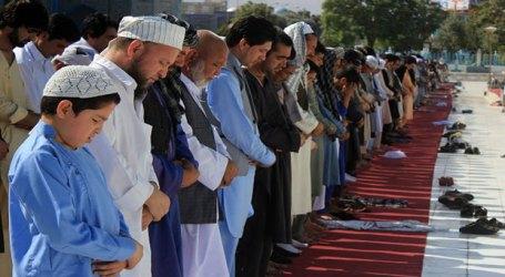 Badan Bantuan Turki Kirimkan Bantuan Ramadan ke Rumania