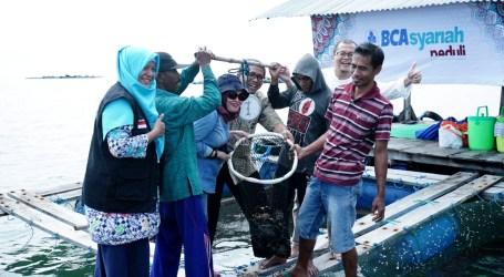 Dompet Dhuafa-BCA Syariah Bantu Budidaya Ikan Kerapu